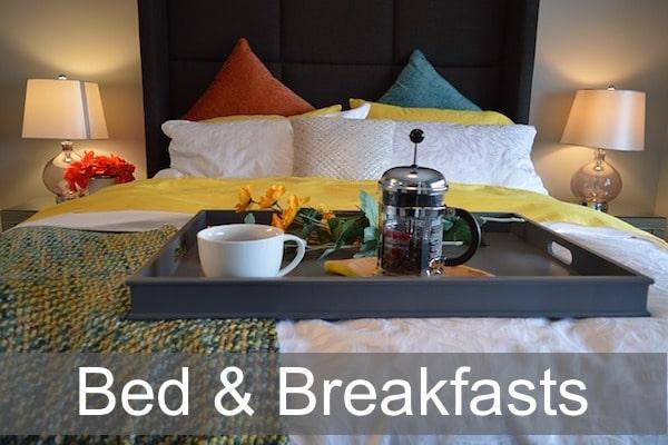 Bed and Breakfasts in the New Forest and Lymington