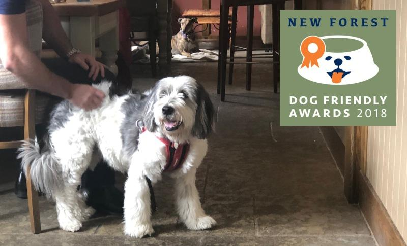 The Bell Inn at Bramshaw won the New Forest Dog Friendly Restaurant of the Year 2018