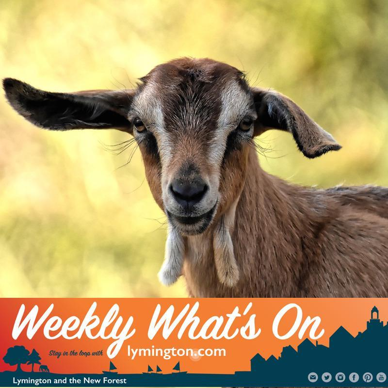 Weekly What's On for Lymington and the New Forest 16 August 2019