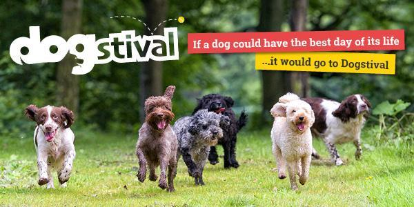Dogstival New Forest Hampshire