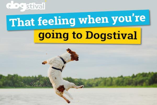 Dogstival promises a fantastic day out for dogs and dog lovers!