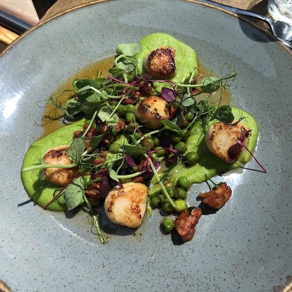 The Haven Restaurant Scallops with Pea Puree Chorizo and Pea Fricasse