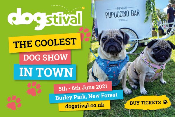 Dogstival promotional banner