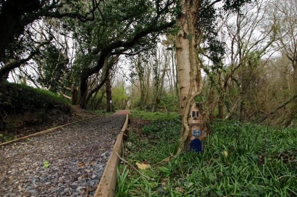 New woodland walk and nature trail in Milford on Sea