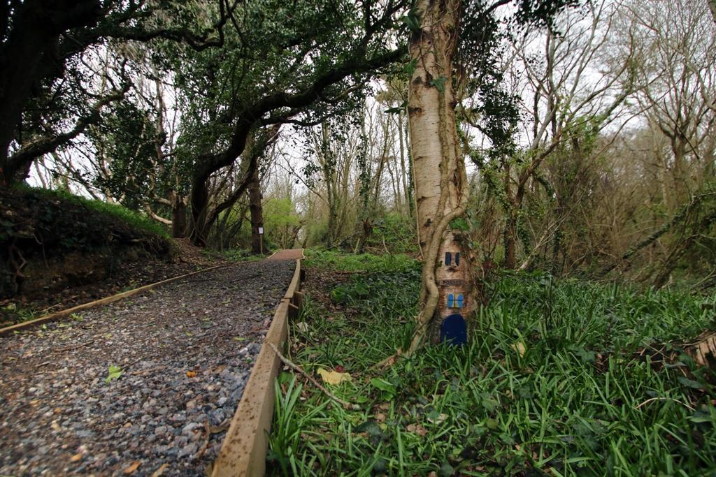 New woodland walk and nature trail in Shorefield Country Park Milford on Sea