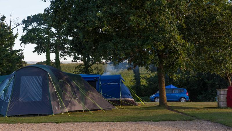 Camping and touring pitches available at Shorefield Holidays' Lytton Lawn Touring Park, based in Milford on Sea