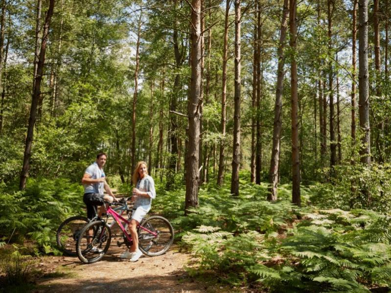Fantastic cycle routes to discover on a Shorefield Holidays escape.