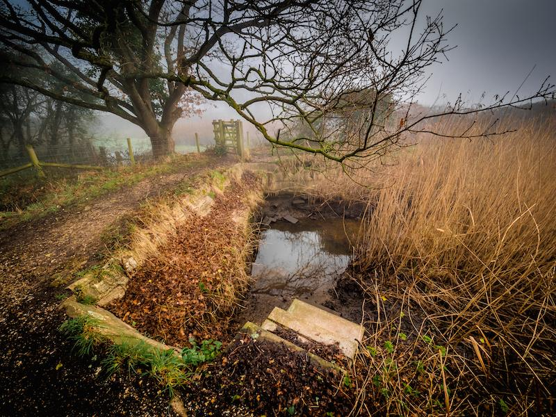 Lymington - by Mark Lanigan