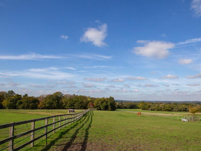 Spectacular views across the New Forest from the Tilefield Equestrian arena