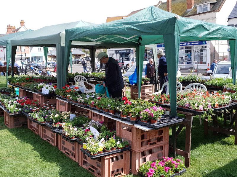 Plant stall in Milford on Sea