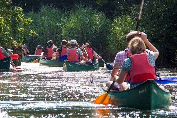 New Forest Activities - Family Adventures and Parties