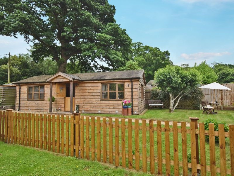 Cosy New Forest cottage retreat