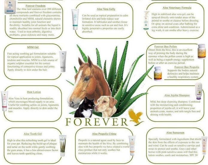 Aloe vera products for animals
