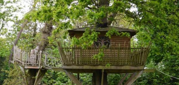 Oak Tree Cottage treehouse