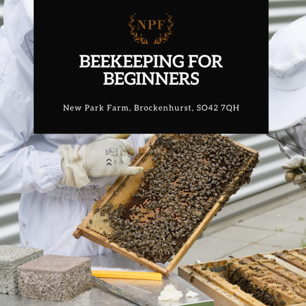 A 2 hour introduction to beekeeping experience