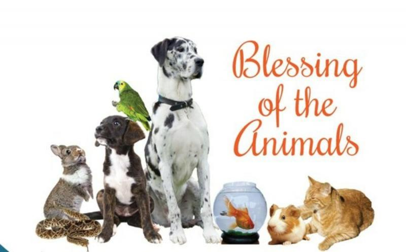 Animal Blessing Service